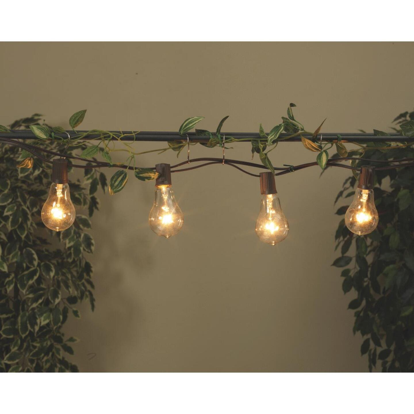 Gerson 10 Ft. 10-Light Clear Bulb String Lights Image 2