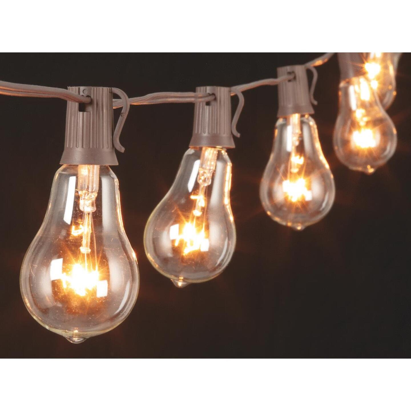 Gerson 10 Ft. 10-Light Clear Bulb String Lights Image 1